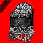 Neurological Decay – Curse of Knowledge 7″ (Lathe)